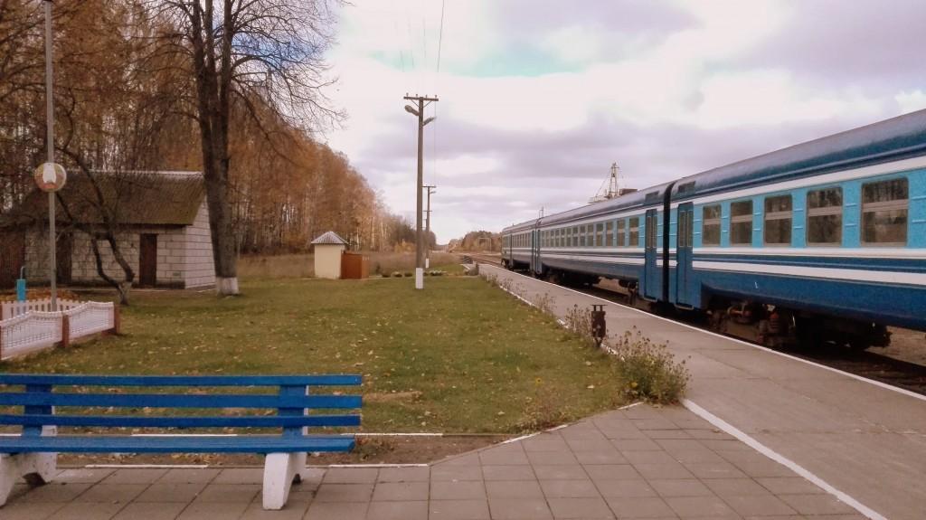 Вид в сторону Кричева. В российском направлении горит красный светофор, но, говорят, путь не разобран. Местные о грузовом движении на восток ничего не знают.
